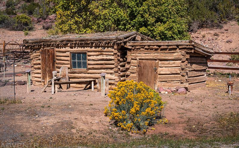 Chicken Coop & Ice House