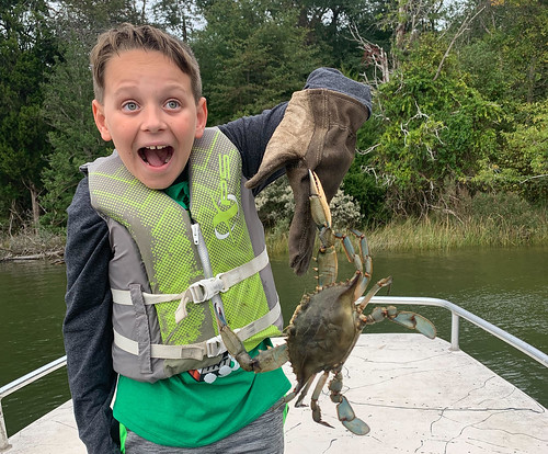 Photo of boy on a boat wearing a lifejacket and holding a blue crab