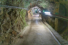 WWII Tunnels-3390