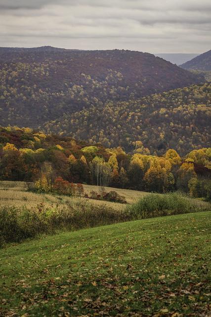 Autumn in Ohiopyle State Park