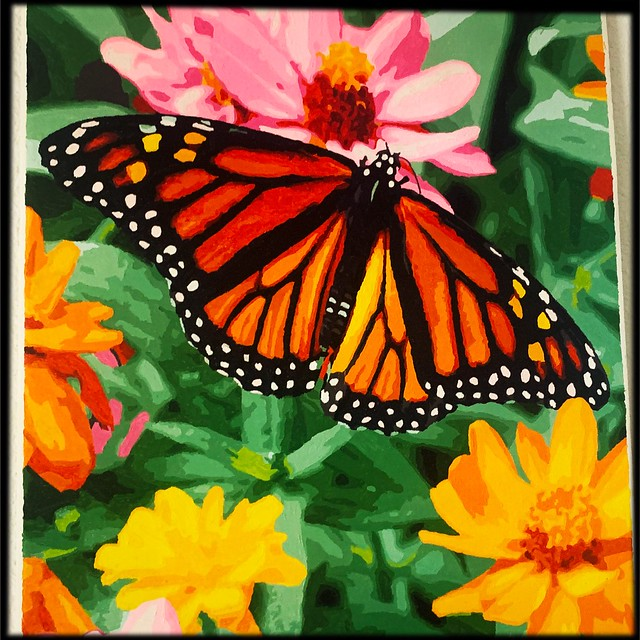 Butterfly Paint by Number