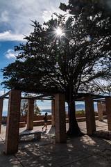 Castillo de Gibralfaro-4100