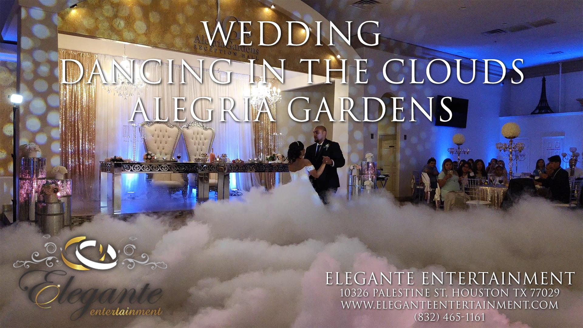 Dancing in the Clouds – Katy Texas – Alegria Gardens
