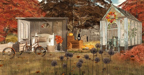Autumn with Serenity Style