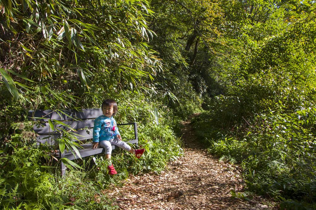 適合寶寶走路及休息的步道。圖片提供:劉建志。