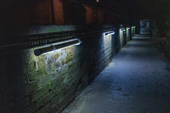 WWII Tunnels-3351