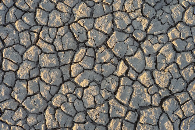 Dry and cracked