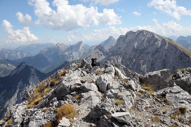 eddie arrives at the peak