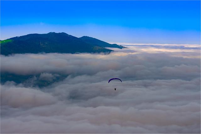 Nebelflug