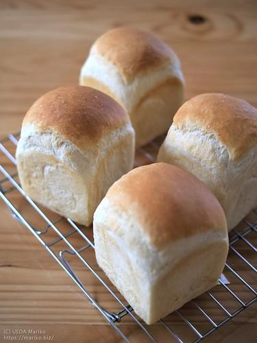 マスカルポーネ食パン 20211009-DSCF1732 (2)