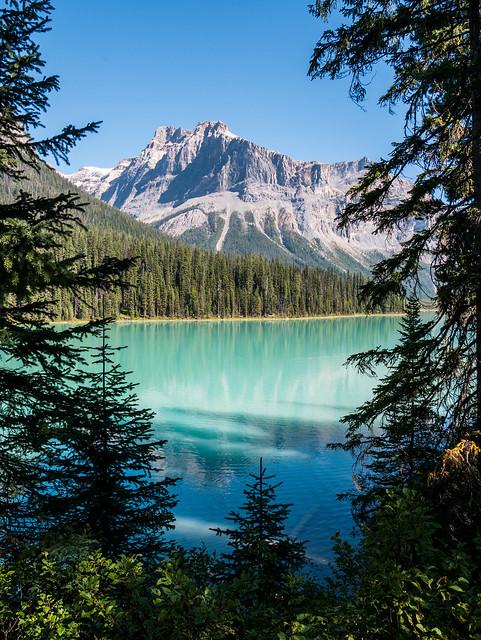 Emerald Lake through the trees