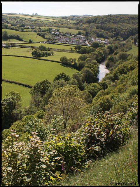 Portrait of the Landscape: Taddiport, Great Torrington, Devon, England P5140031