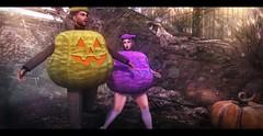 Wild Pumpkins.