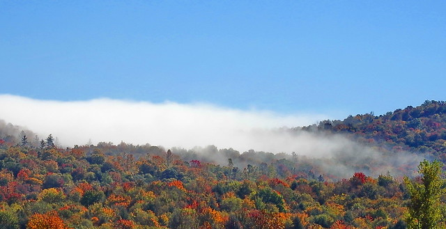 Fog, Rolling Over the Hills