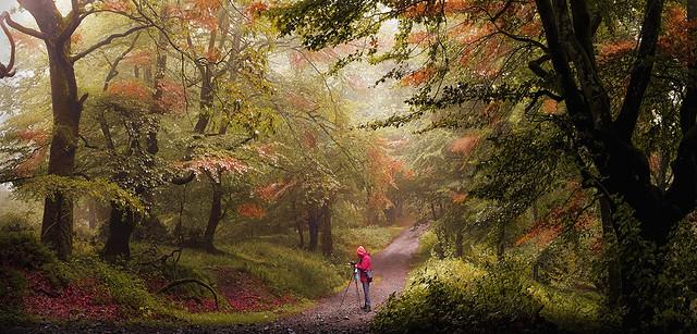 MAKATZ autumn 4