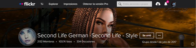 TYSM Second Life German -Second Life - Style for the cover