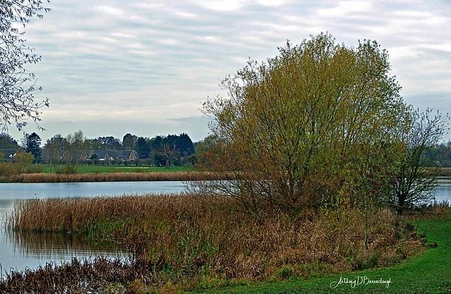 Autumn Lake Scene 307a-1