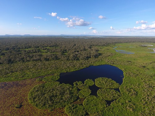 Lake in northern Pantanal in Brazil