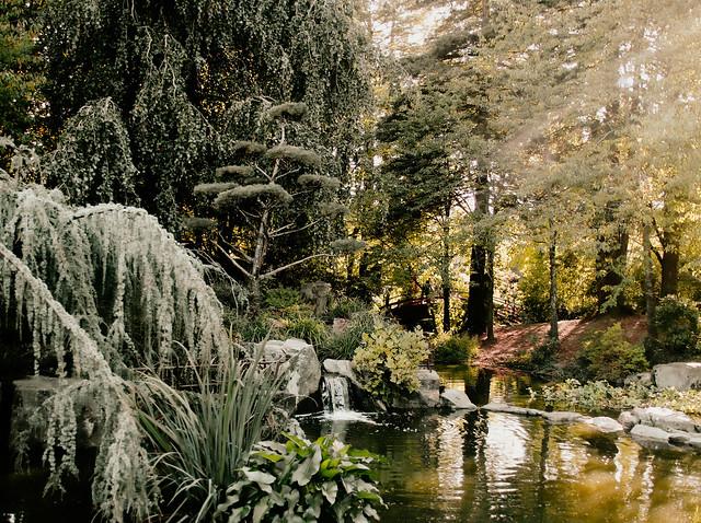 étang magique
