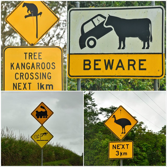 Before we go - remember these road rules.