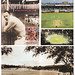 A Superb Century 100 Years of the Gabba  1895-1995 by Wayne Smith