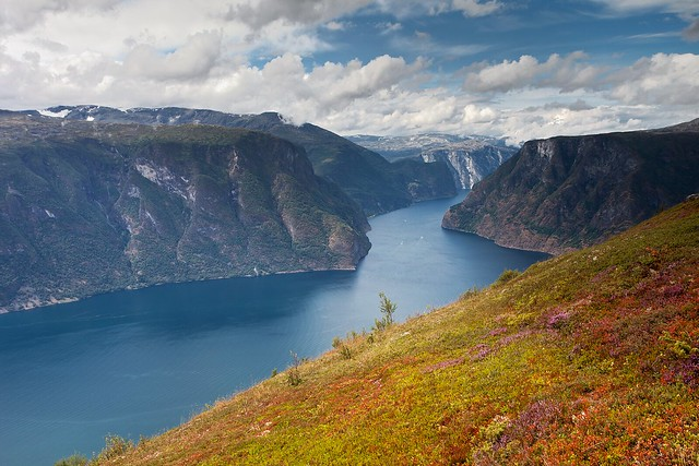 Aurlandsfjord from Mount Prest