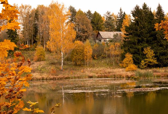 Autumn landscape_Abramtsevo
