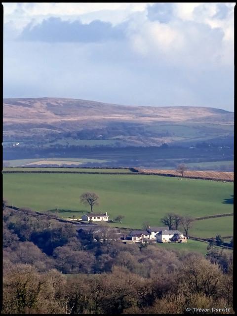 Portrait of the: Landscape Totleigh and Dartmoor, Devon, England DSC05448
