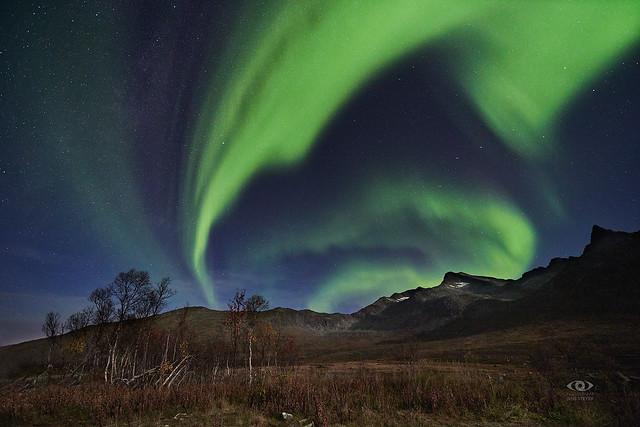 Aurora Fireworks in the moonlight ·  ·  ·   (R5B_0979)