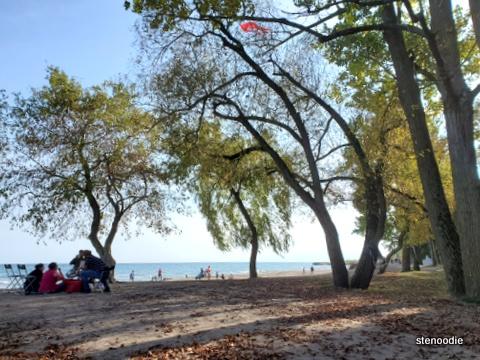 Rouge National Urban Park beach