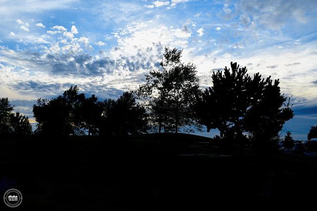 Wellington Point Park Silhouettes - Ladner
