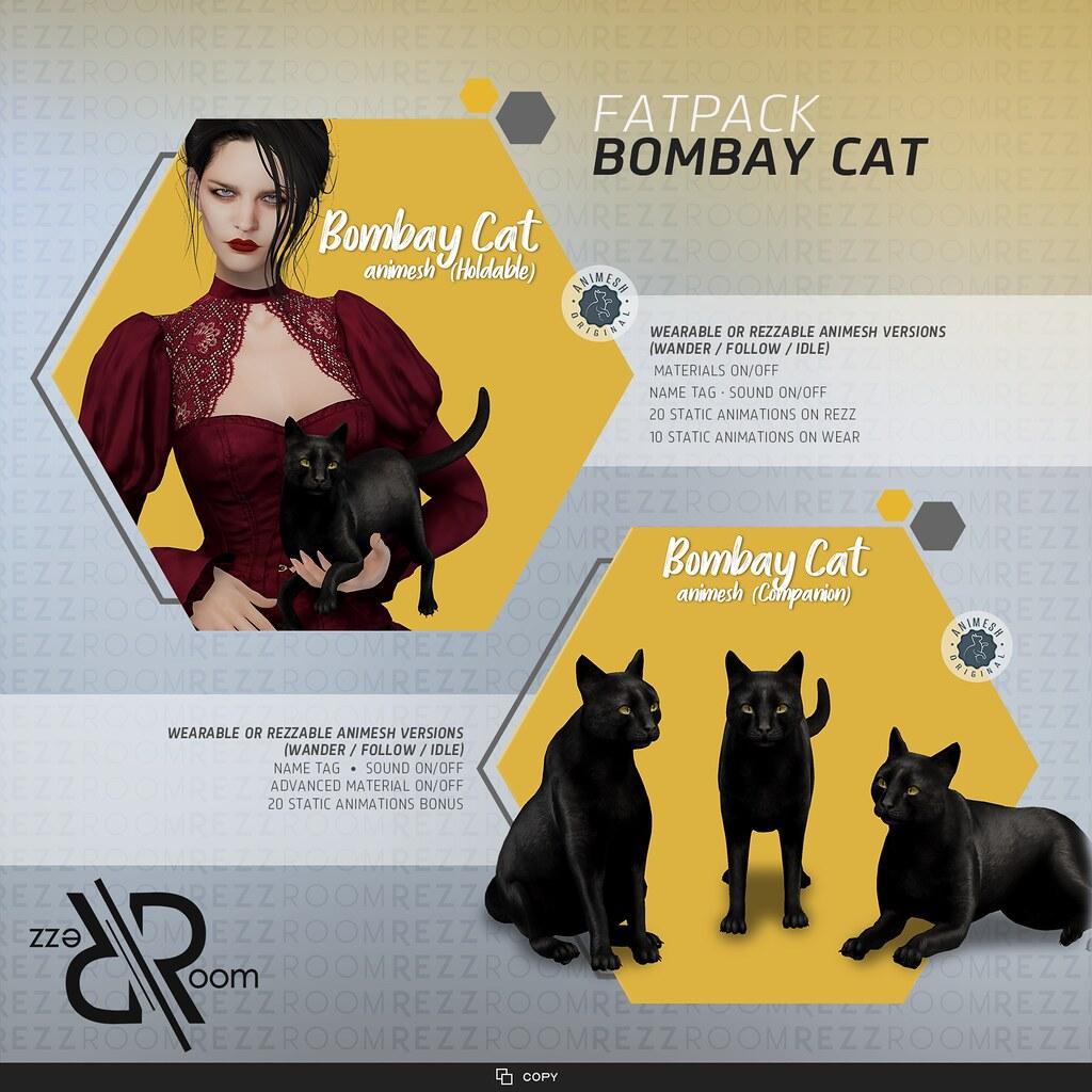 [Rezz Room] Bombay Cat  Adult Animesh (Companion) and Bombay Cat Animesh (Holdable)