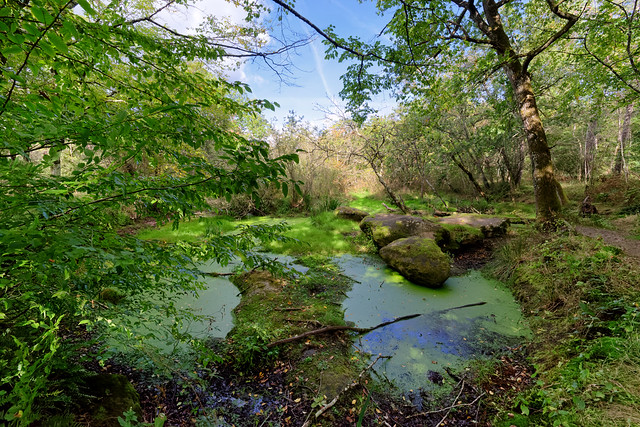 Dencourt hiking path 20