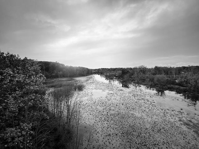Galien River in the rain