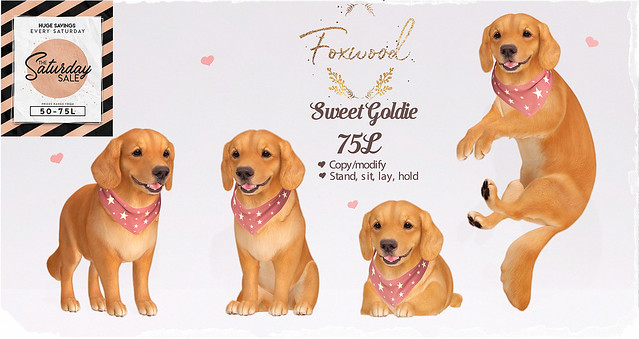Foxwood - Sweet Goldie - SatSale