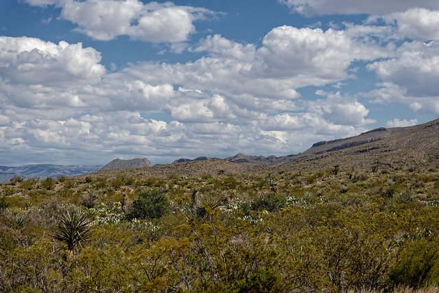 Wide Open Spaces in Big Bend National Park