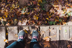 Looking down at a woman's sneakers on a boardwalk trail, surrounded by fall leaves in autumn