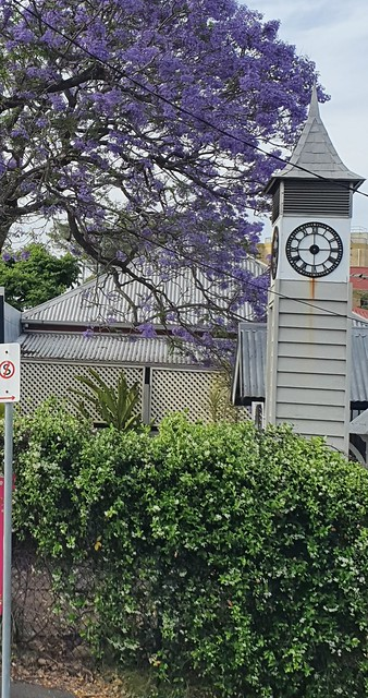 9681 The side of the clinic under the Jacaranda 20211013_174127