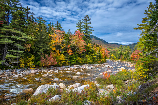 View of fall foliage along the Swift River in the White Mountains of New Hampshire