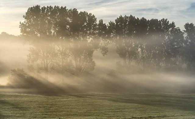 *fog magic on the cycle track II*