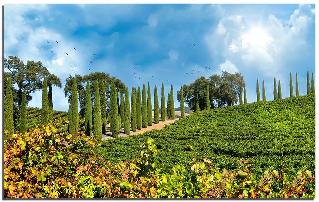 Looks like Tuscany--