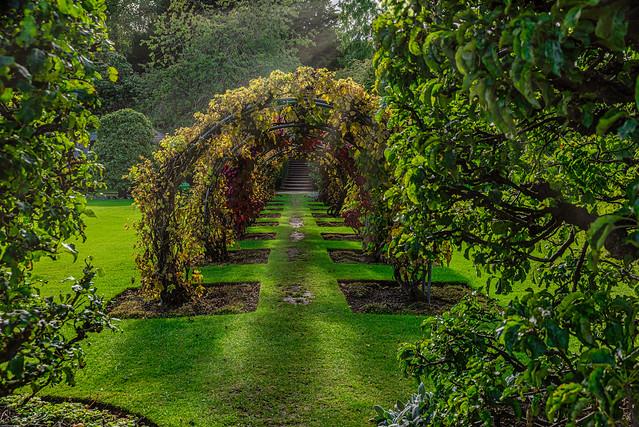 Powys Castle Gardens