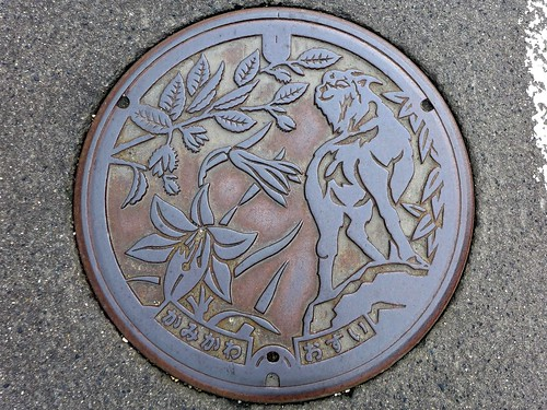 kamikawa Nigata, manhole cover (新潟県上川村のマンホール)