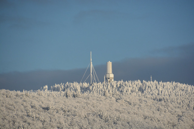 snow cladden Feldberg/Ts.