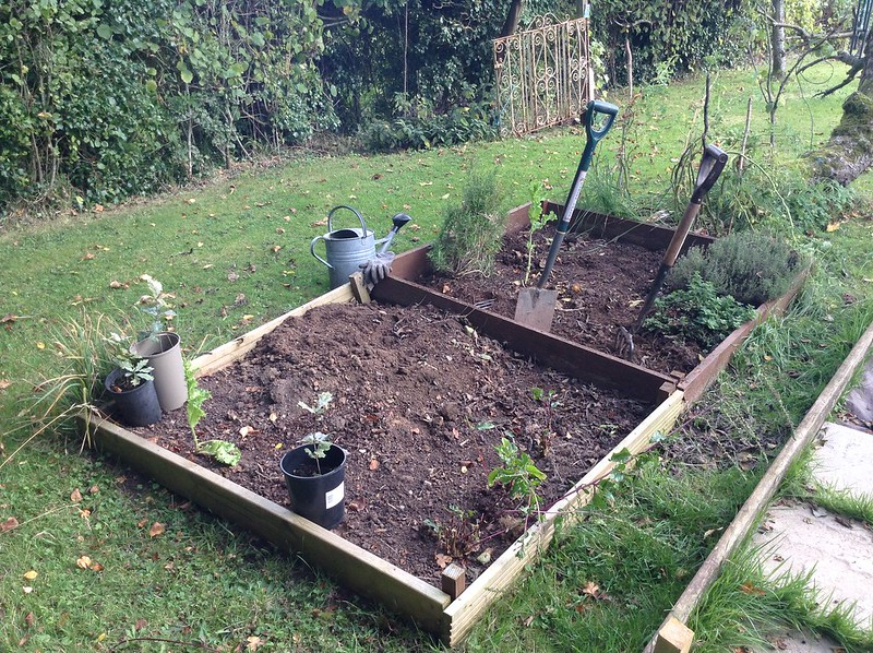 Tidying up the herb bed in the Orchard