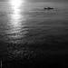 Les eaux noires du Mekong