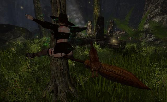 Splat into a Tree