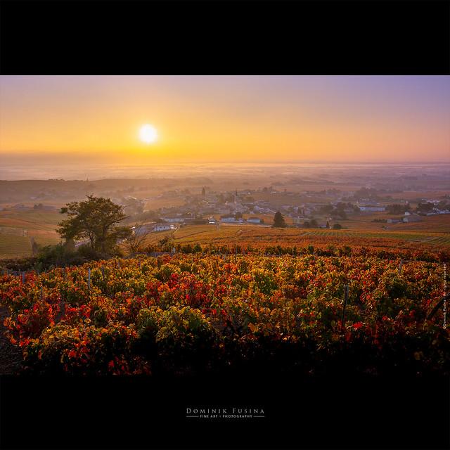 FLeurie | Sunrise