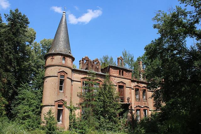 Le château au bois poussant #6