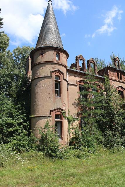 Le château au bois poussant #3